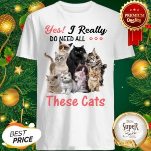 Yes I Really Do Need All These Cats Grumpy Maine Coon Shirt