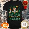Nice Leprechaun King And Shamrocks Saint Patrick Is My Homeboy T-shirt
