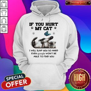 If You Hurt My Cat I Will Slap You So Hard Even Google Won't Be Able To Find You hoodie